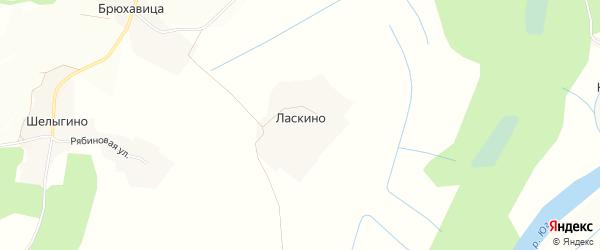 Карта деревни Ласкино в Вологодской области с улицами и номерами домов