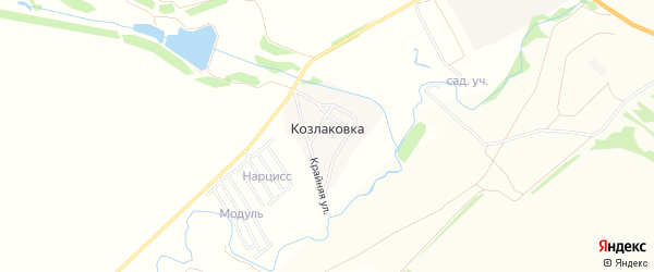 Карта деревни Козлаковки в Саратовской области с улицами и номерами домов