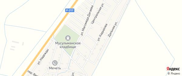 Звездная улица на карте села Белгатой Чечни с номерами домов
