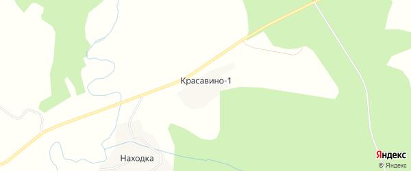 Карта деревни Красавина-1 в Вологодской области с улицами и номерами домов