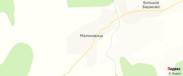 Карта деревни Малиновица в Вологодской области с улицами и номерами домов