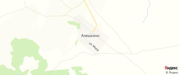 Карта деревни Алешкино в Саратовской области с улицами и номерами домов