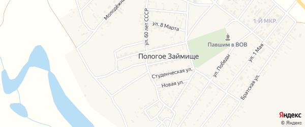 Колхозная улица на карте села Пологого Займища Астраханской области с номерами домов