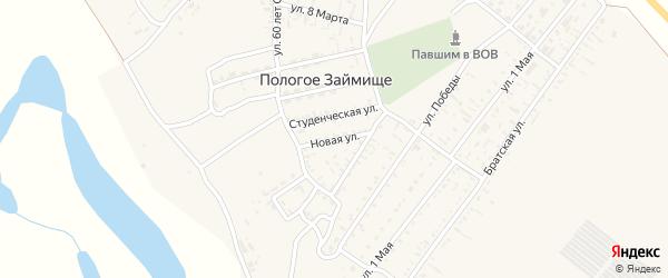 Новая улица на карте села Пологого Займища Астраханской области с номерами домов