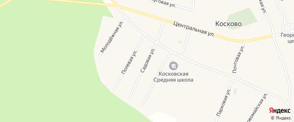 Садовая улица на карте села Косково Вологодской области с номерами домов
