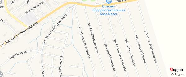 Улица Али Эльмурзаева на карте села Автуры Чечни с номерами домов