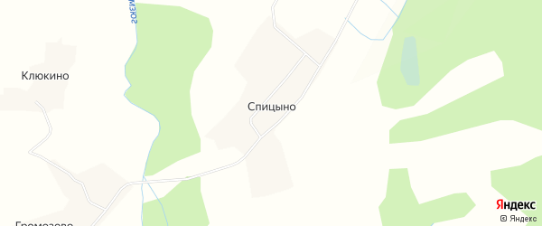 Карта деревни Спицыно в Вологодской области с улицами и номерами домов