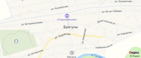 Улица Пушкина на карте села Брагунов с номерами домов