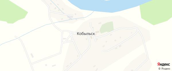 Дорожная улица на карте села Кобыльск Вологодской области с номерами домов