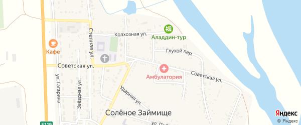 Советская улица на карте села Соленого Займища Астраханской области с номерами домов