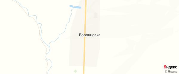 Карта села Воронцовки в Саратовской области с улицами и номерами домов