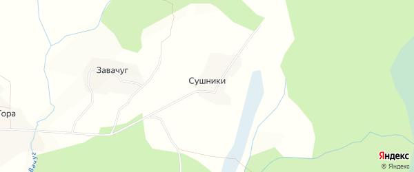 Карта деревни Сушников в Вологодской области с улицами и номерами домов