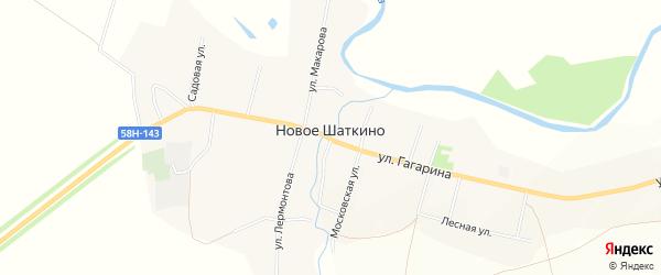 Карта села Новое Шаткино в Пензенской области с улицами и номерами домов