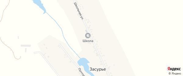Школьная улица на карте села Засурье с номерами домов