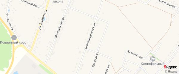 Благовещенская улица на карте деревни Шумерли с номерами домов