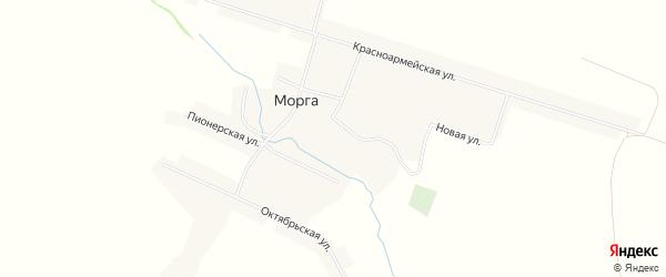Карта села Морги в Мордовии с улицами и номерами домов