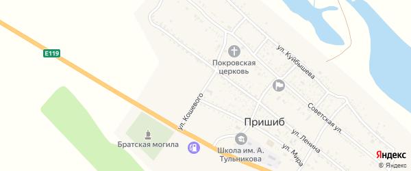 Переулок Олега Кошевого на карте села Пришиба Астраханской области с номерами домов