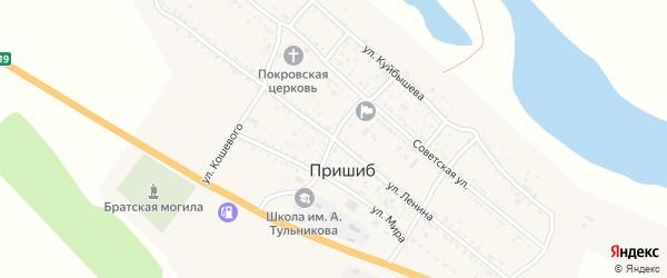 Улица Ленина на карте села Пришиба Астраханской области с номерами домов