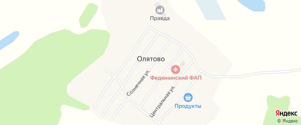 Цветочная улица на карте деревни Олятово Вологодской области с номерами домов