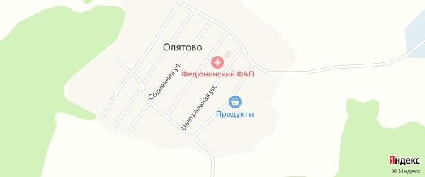Центральная улица на карте деревни Олятово Вологодской области с номерами домов