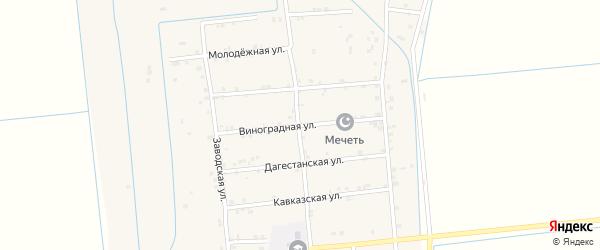 Виноградная улица на карте села Новогагатли с номерами домов