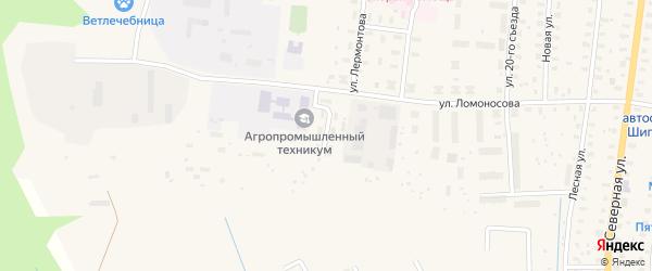 Дорожный переулок на карте поселка Шипицыно с номерами домов