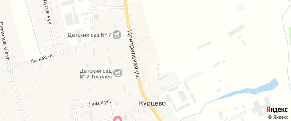 Лесная улица на карте деревни Курцево с номерами домов