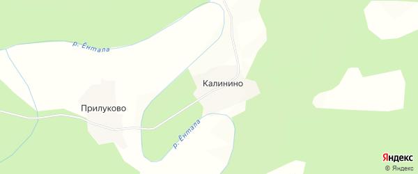 Карта деревни Калинино в Вологодской области с улицами и номерами домов