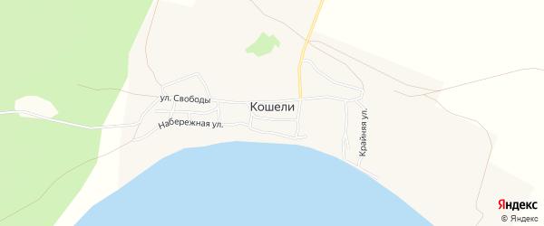 Карта села Кошели в Саратовской области с улицами и номерами домов