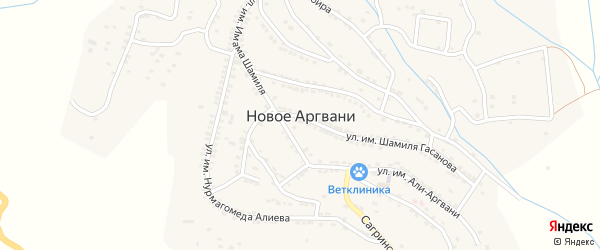Улица Имени Шихабудина Сайгидинова на карте села Ново-Аргвани Дагестана с номерами домов