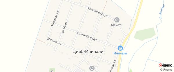 Улица Наиба Кади на карте села Цияба Ичичали Дагестана с номерами домов