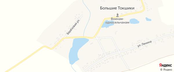 Березовая улица на карте деревни Большие Токшики Чувашии с номерами домов