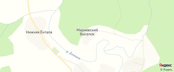 Карта деревни Мариевский Выселка в Вологодской области с улицами и номерами домов