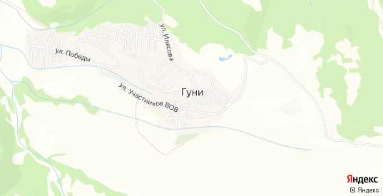 Карта села Гуни в Республике Дагестане
