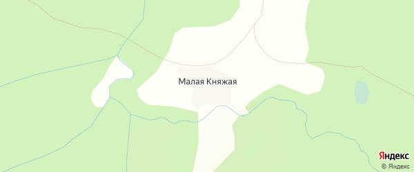Карта Малой Княжой деревни в Вологодской области с улицами и номерами домов