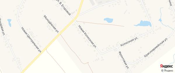 Новая Колхозная улица на карте села Моргаушей с номерами домов