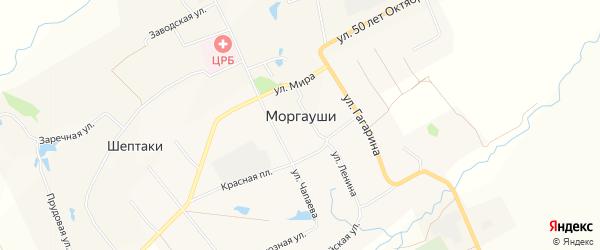 Карта села Моргаушей в Чувашии с улицами и номерами домов