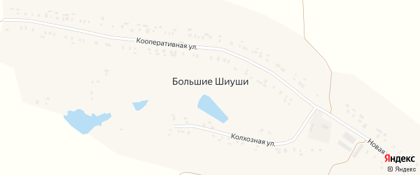Новая улица на карте деревни Большие Шиуши с номерами домов