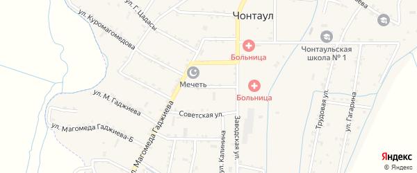 Улица Пушкина на карте села Чонтаула с номерами домов