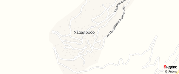Улица Исалмагомеда на карте села Уздалроса с номерами домов