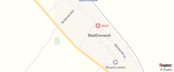 Южный переулок на карте Верблюжьего поселка Астраханской области с номерами домов