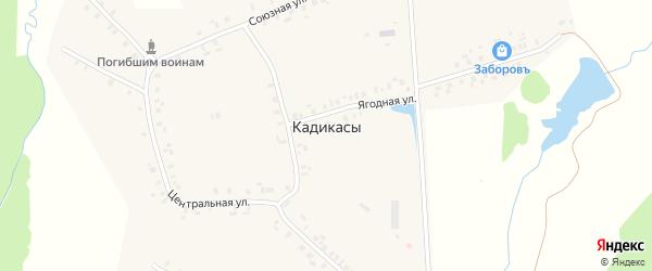 Ягодная улица на карте деревни Кадикас с номерами домов