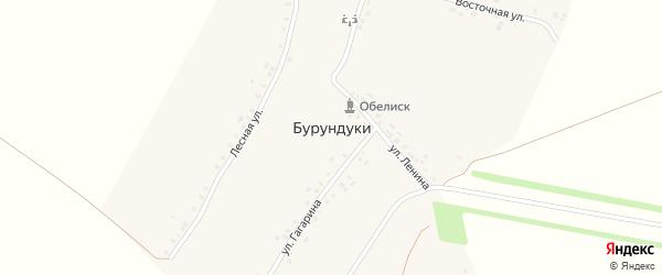 Лесная улица на карте деревни Бурундуки с номерами домов