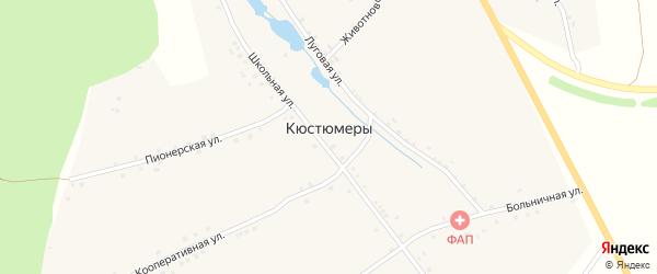 Кооперативная улица на карте деревни Кюстюмеры с номерами домов