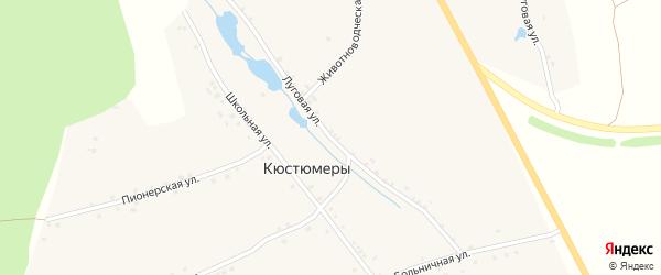 Луговая улица на карте деревни Кюстюмеры с номерами домов