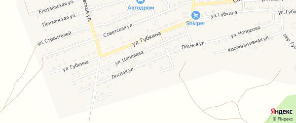Лесная улица на карте села Енотаевки Астраханской области с номерами домов
