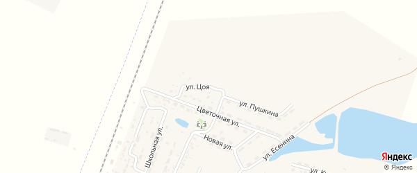 Улица В.Цоя на карте села Зензели Астраханской области с номерами домов