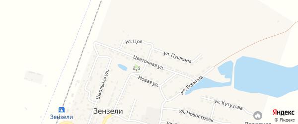 Цветочная улица на карте села Зензели Астраханской области с номерами домов