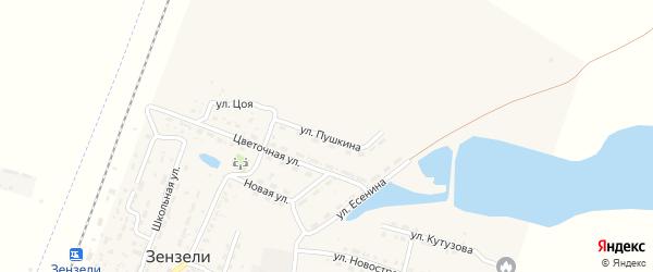 Улица Пушкина на карте села Зензели Астраханской области с номерами домов