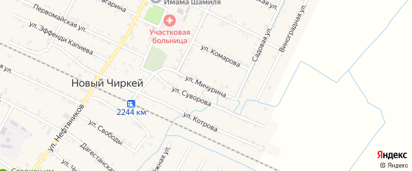 Улица Мичурина на карте села Нового Чиркея с номерами домов